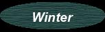Winterschenkis